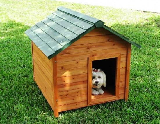 Casinha-de-cachorro-construir-passo-a-passo