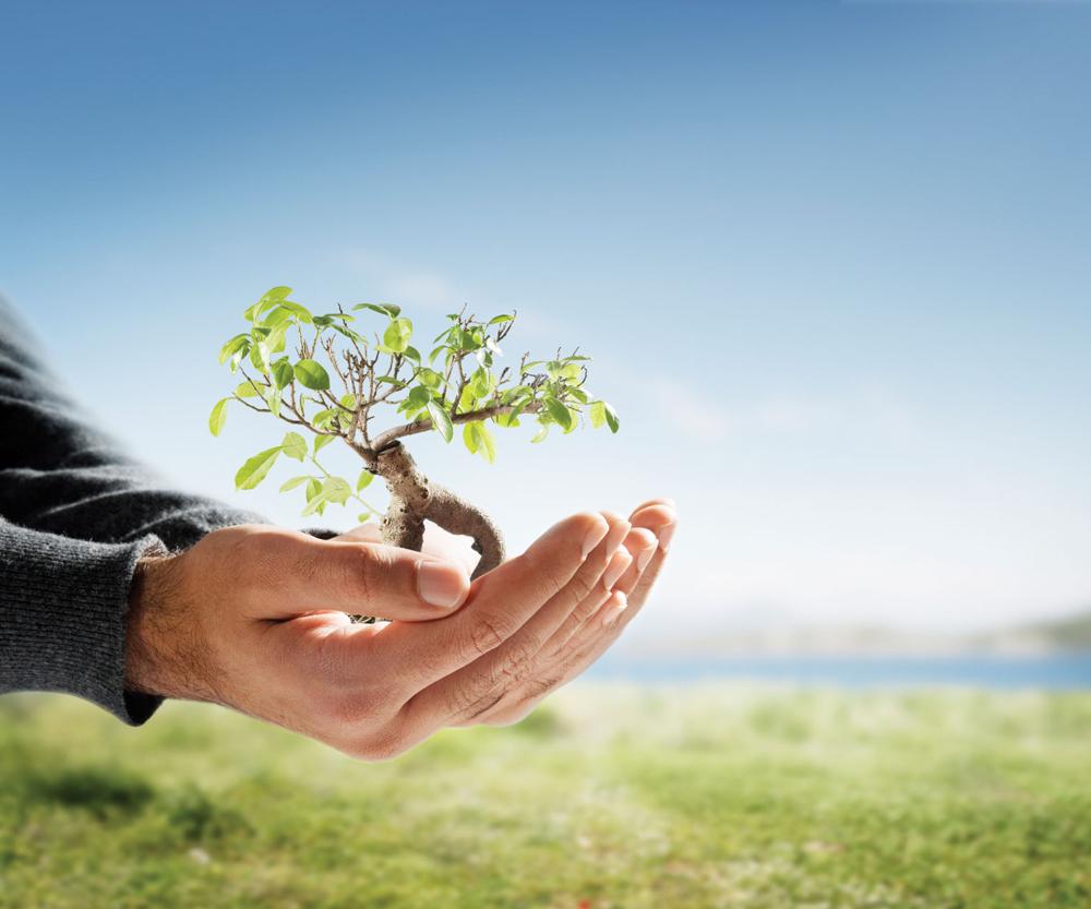 Gestores ambientais são muito procurados no mercado de trabalho.