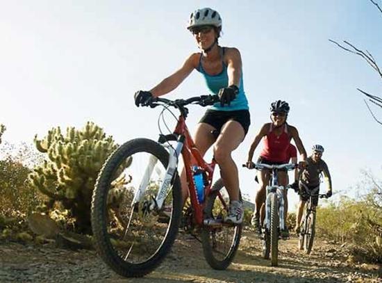 Veja qual é a bicicleta ideal para o tipo de pedalada que você pretende fazer (Foto: Divulgação)